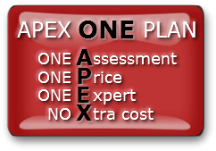 Apex One Plan
