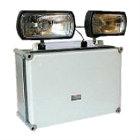 2×21 Watt TSW Non Maintained Twin Spot Light